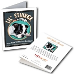 GCT-104  Greeting Card 6-Pack - Lil' Stinker Boston